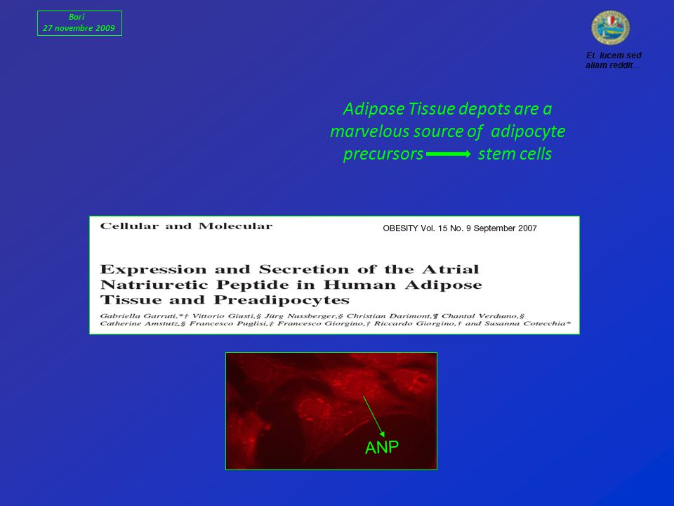 ANP Bari 27 novembre 2009 Et lucem sed aliam reddit… Adipose Tissue depots are a marvelous source of adipocyte precursors stem cells