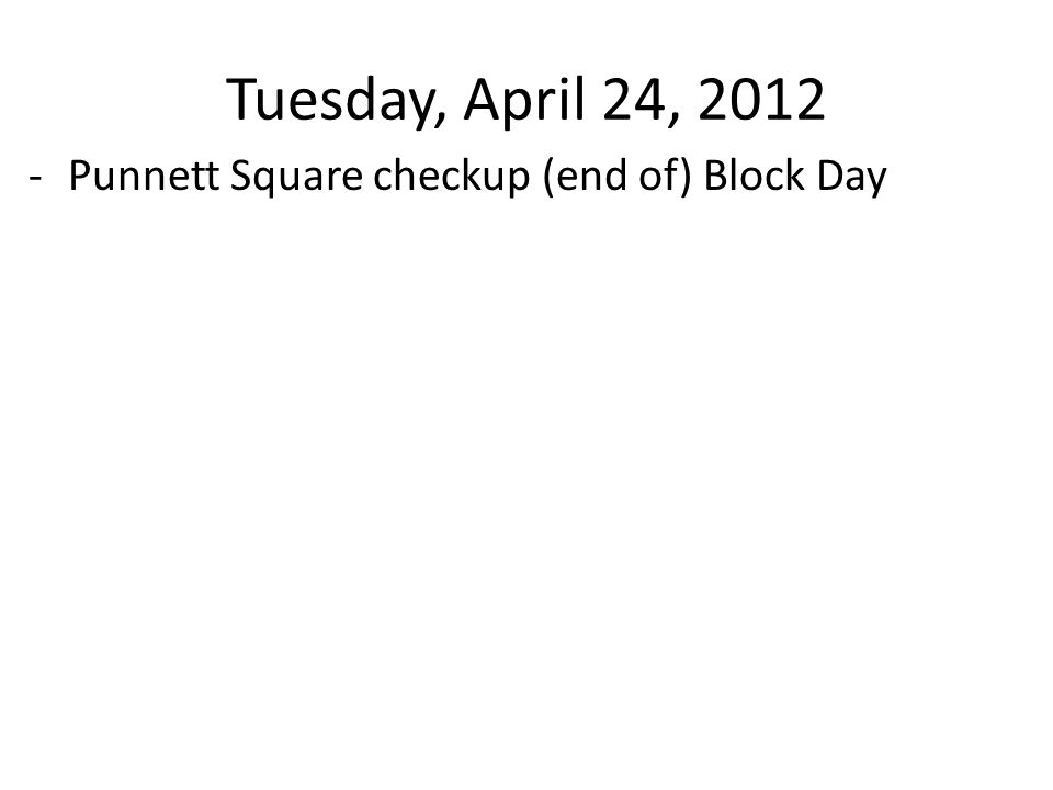 Tuesday, April 24, 2012 -Punnett Square checkup (end of) Block Day