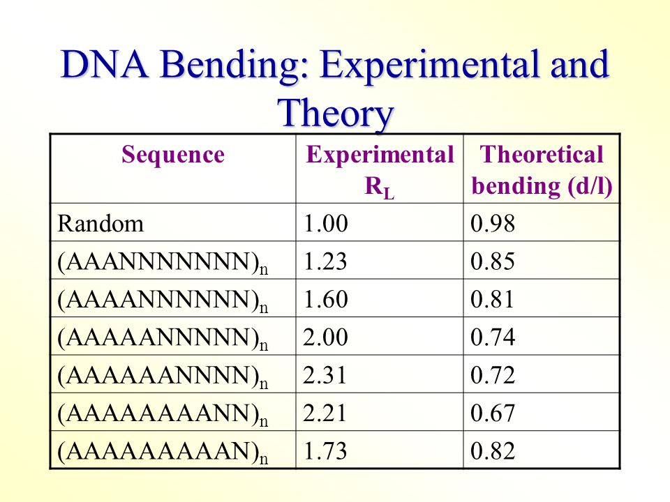 DNA Bending: Experimental and Theory SequenceExperimental R L Theoretical bending (d/l) Random1.000.98 (AAANNNNNNN) n 1.230.85 (AAAANNNNNN) n 1.600.81 (AAAAANNNNN) n 2.000.74 (AAAAAANNNN) n 2.310.72 (AAAAAAAANN) n 2.210.67 (AAAAAAAAAN) n 1.730.82