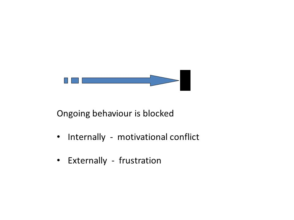 Ongoing behaviour is blocked Internally - motivational conflict Externally - frustration