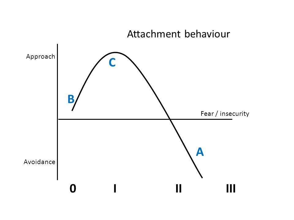 Approach Fear / insecurity Attachment behaviour Avoidance B C A III0III