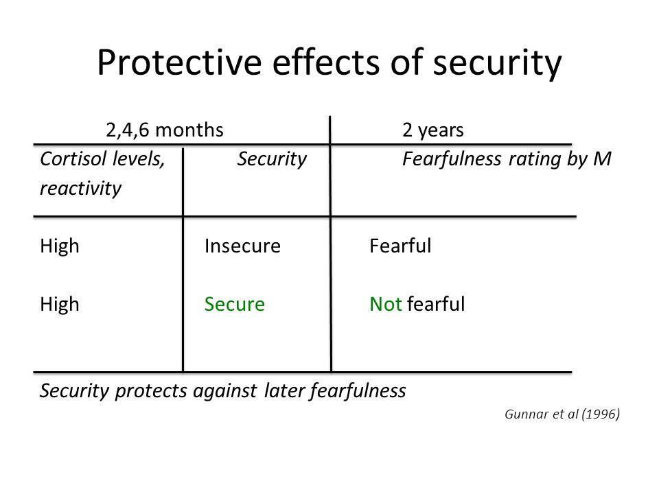 Protective effects of security 2,4,6 months2 years Cortisol levels, SecurityFearfulness rating by M reactivity HighInsecureFearful High SecureNot fearful Security protects against later fearfulness Gunnar et al (1996)