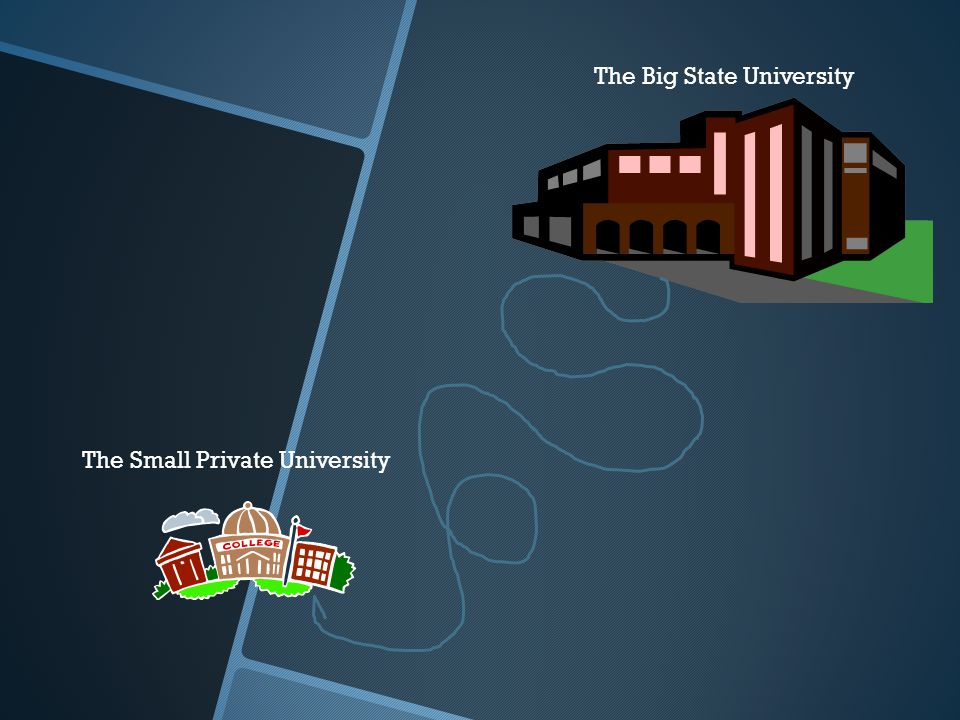 The Big State University The Small Private University