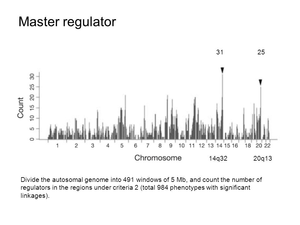 Master regulator Divide the autosomal genome into 491 windows of 5 Mb, and count the number of regulators in the regions under criteria 2 (total 984 phenotypes with significant linkages).