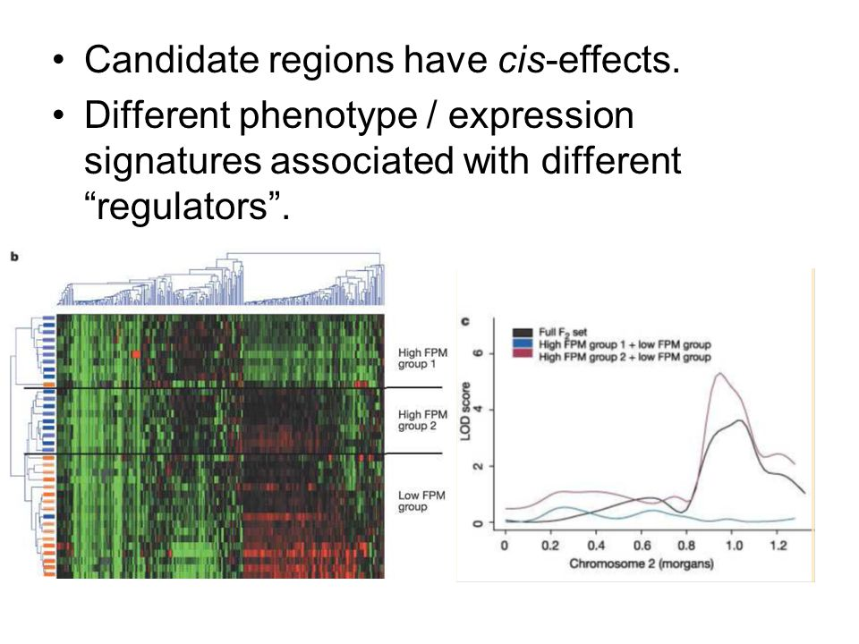 Candidate regions have cis-effects.