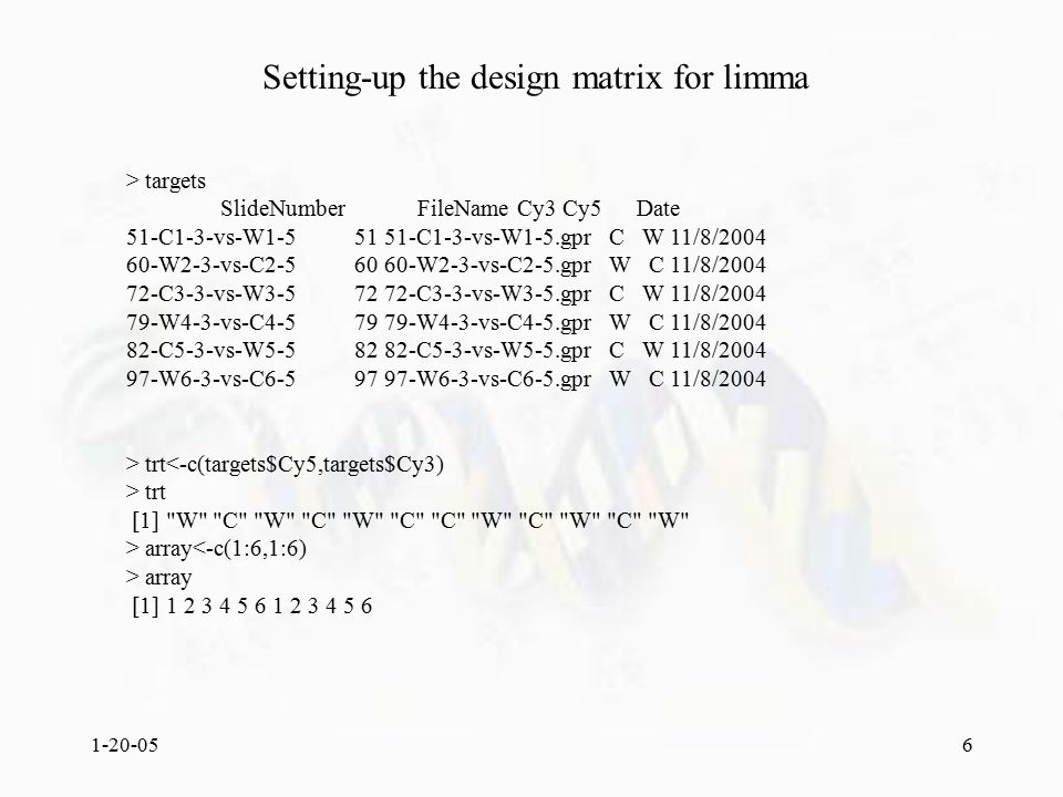 1-20-056 Setting-up the design matrix for limma > targets SlideNumber FileName Cy3 Cy5 Date 51-C1-3-vs-W1-5 51 51-C1-3-vs-W1-5.gpr C W 11/8/2004 60-W2-3-vs-C2-5 60 60-W2-3-vs-C2-5.gpr W C 11/8/2004 72-C3-3-vs-W3-5 72 72-C3-3-vs-W3-5.gpr C W 11/8/2004 79-W4-3-vs-C4-5 79 79-W4-3-vs-C4-5.gpr W C 11/8/2004 82-C5-3-vs-W5-5 82 82-C5-3-vs-W5-5.gpr C W 11/8/2004 97-W6-3-vs-C6-5 97 97-W6-3-vs-C6-5.gpr W C 11/8/2004 > trt<-c(targets$Cy5,targets$Cy3) > trt [1] W C W C W C C W C W C W > array<-c(1:6,1:6) > array [1] 1 2 3 4 5 6 1 2 3 4 5 6