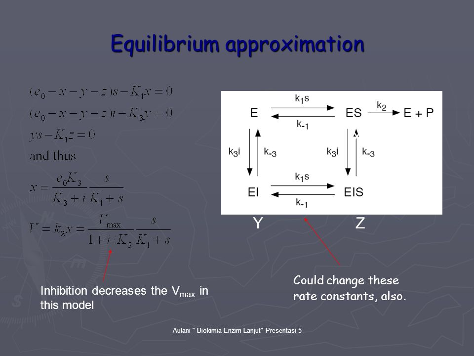 Aulani Biokimia Enzim Lanjut Presentasi 5 Equilibrium approximation X YZ Could change these rate constants, also.