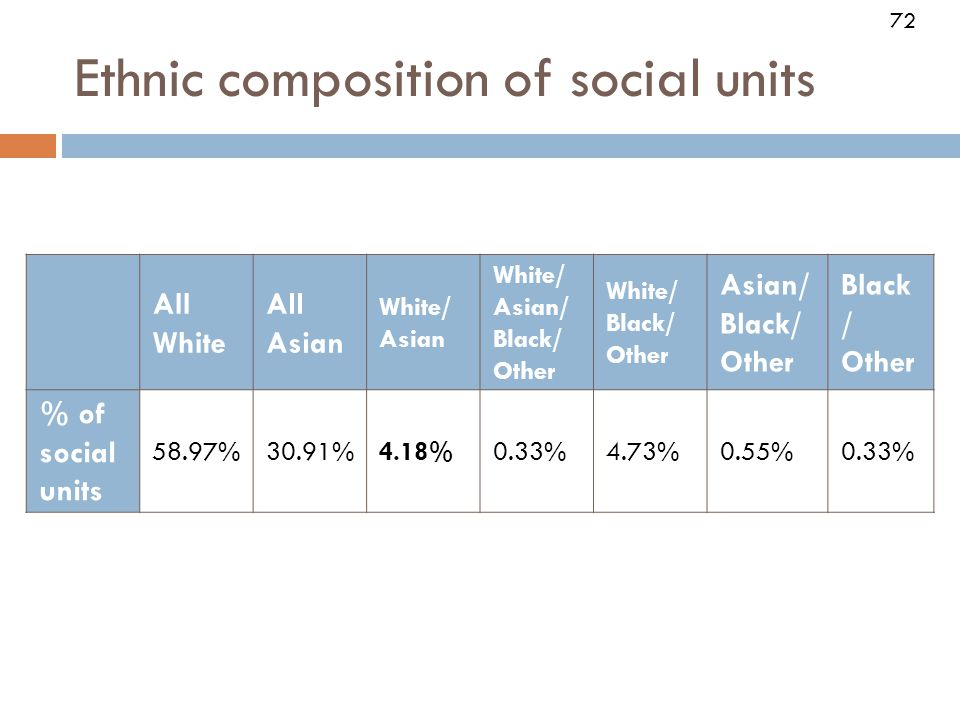 72 All White All Asian White/ Asian White/ Asian/ Black/ Other White/ Black/ Other Asian/ Black/ Other Black / Other % of social units 58.97%30.91%4.18%0.33%4.73%0.55%0.33% Ethnic composition of social units