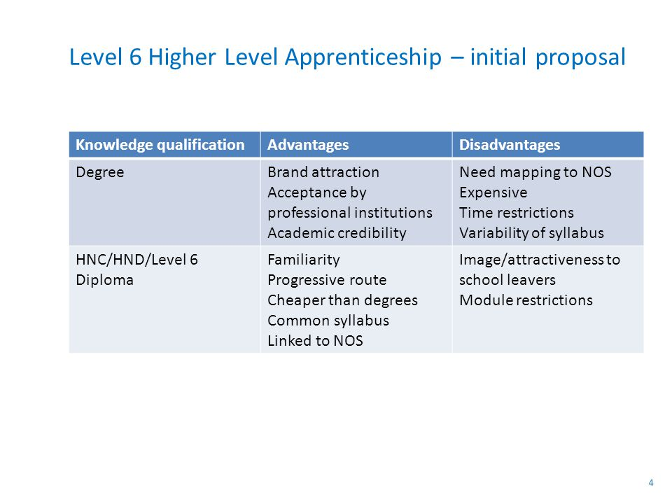 Level 6 Higher Level Apprenticeship – initial proposal Knowledge qualificationAdvantagesDisadvantages DegreeBrand attraction Acceptance by professional institutions Academic credibility Need mapping to NOS Expensive Time restrictions Variability of syllabus HNC/HND/Level 6 Diploma Familiarity Progressive route Cheaper than degrees Common syllabus Linked to NOS Image/attractiveness to school leavers Module restrictions 4