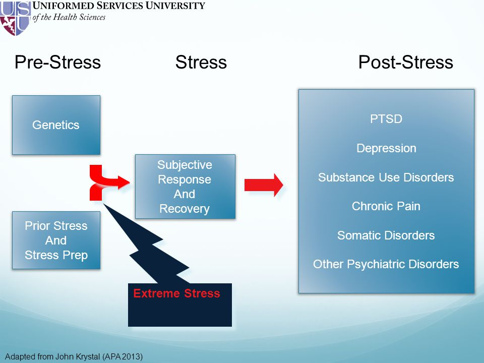 Pre-Stress Stress Post-Stress Extreme Stress Genetics Prior Stress And Stress Prep Subjective Response And Recovery PTSD Depression Substance Use Disorders Chronic Pain Somatic Disorders Other Psychiatric Disorders Adapted from John Krystal (APA 2013)
