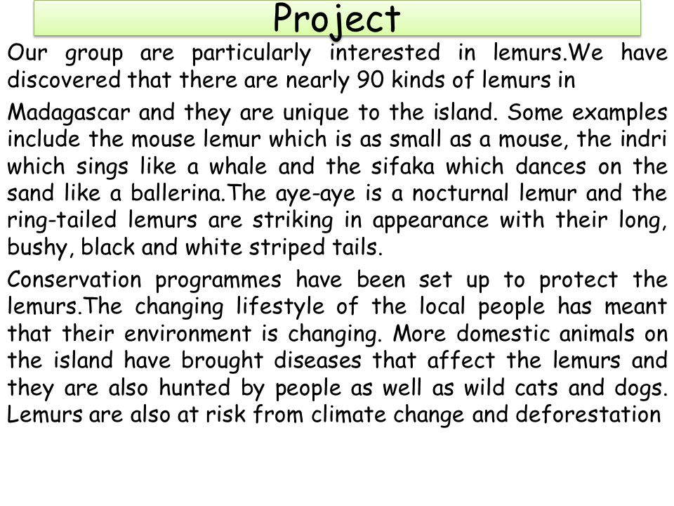Project Our group are particularly interested in lemurs.We have discovered that there are nearly 90 kinds of lemurs in Madagascar and they are unique to the island.