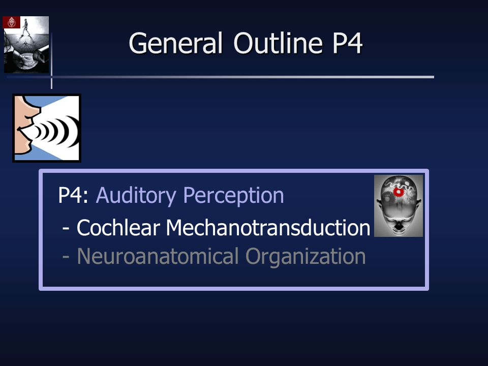 General Outline P4 - Cochlear Mechanotransduction - Neuroanatomical Organization P4: Auditory Perception