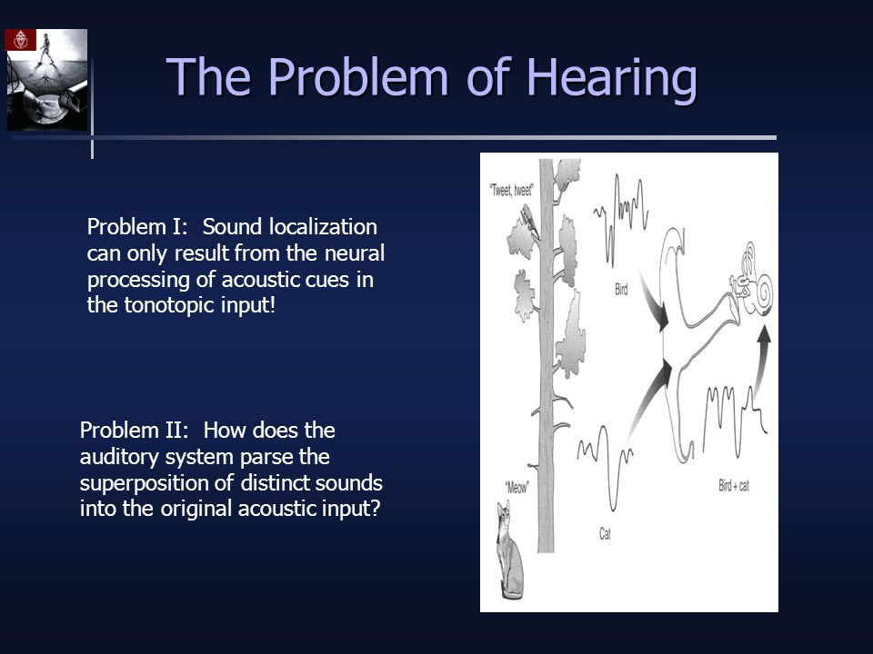 The Problem of Hearing Problem I: Sound localization can only result from the neural processing of acoustic cues in the tonotopic input.