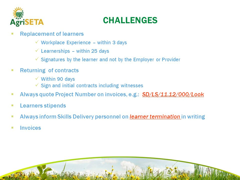 CHALLENGES  Replacement of learners Workplace Experience – within 3 days Learnerships – within 25 days Signatures by the learner and not by the Employer or Provider  Returning of contracts Within 90 days Sign and initial contracts including witnesses  Always quote Project Number on invoices, e.g.: SD/LS/11.12/000/Look  Learners stipends  Always inform Skills Delivery personnel on learner termination in writing  Invoices