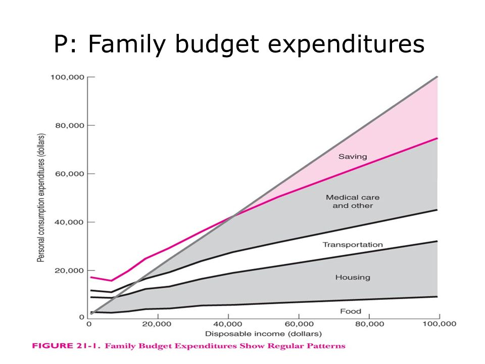 P: Family budget expenditures