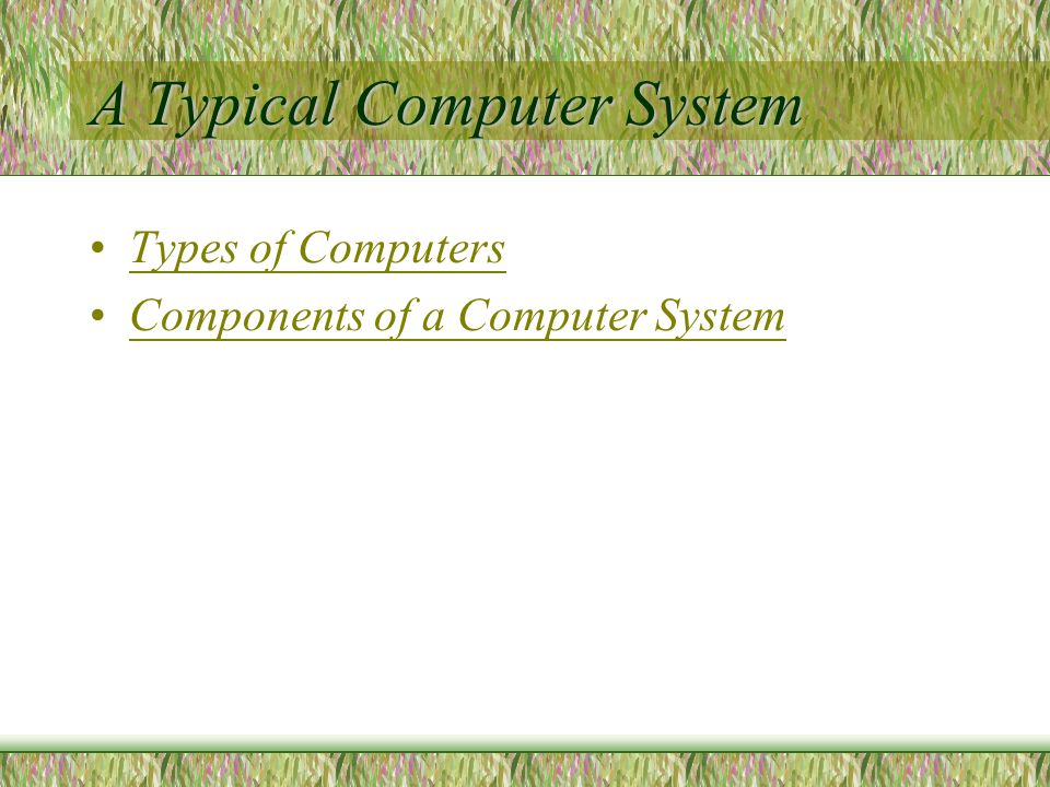 A Typical Computer System Types of Computers Components of a Computer System