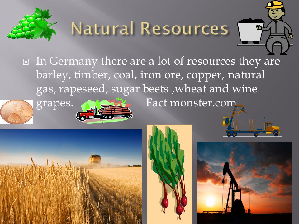  In Germany there are a lot of resources they are barley, timber, coal, iron ore, copper, natural gas, rapeseed, sugar beets,wheat and wine grapes.