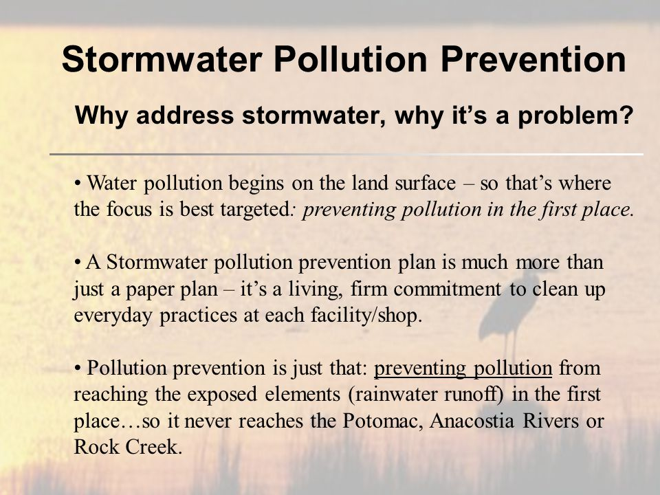 Stormwater Pollution Prevention Why address stormwater, why it's a problem.