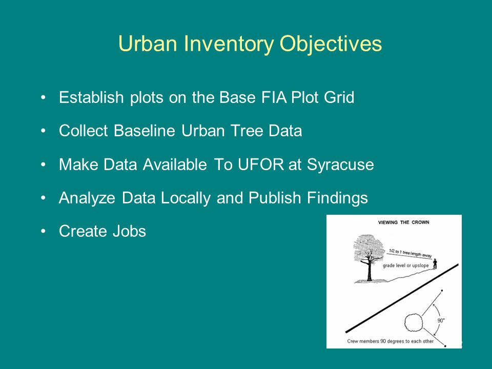 Urban Inventory Objectives Establish plots on the Base FIA Plot Grid Collect Baseline Urban Tree Data Make Data Available To UFOR at Syracuse Analyze Data Locally and Publish Findings Create Jobs 2