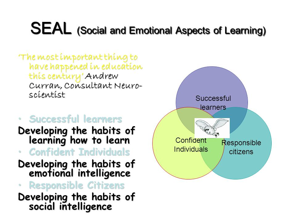SEAL (Social and Emotional Aspects of Learning) 'The most important thing to have happened in education this century' Andrew Curran, Consultant Neuro- scientist Successful learnersSuccessful learners Developing the habits of learning how to learn Confident IndividualsConfident Individuals Developing the habits of emotional intelligence Responsible CitizensResponsible Citizens Developing the habits of social intelligence Successful learners Confident Individuals Responsible citizens