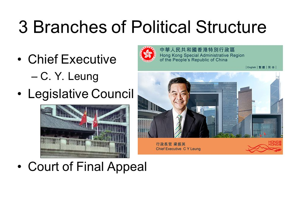 3 Branches of Political Structure Chief Executive –C.