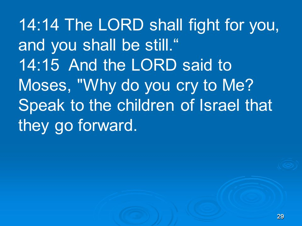 29 14:14 The LORD shall fight for you, and you shall be still. 14:15 And the LORD said to Moses, Why do you cry to Me.