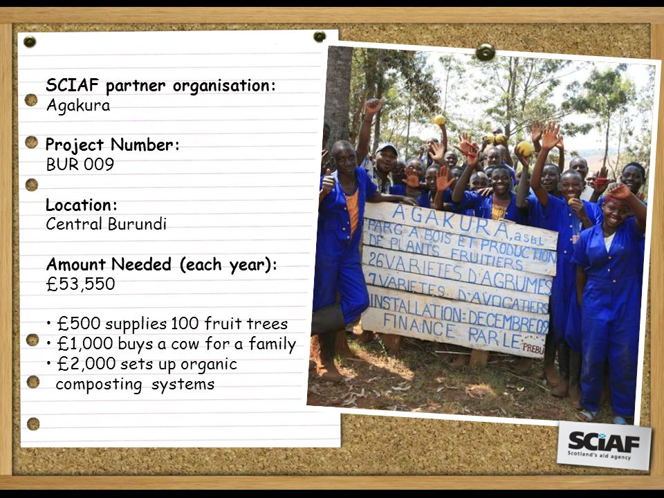 SCIAF partner organisation: Agakura Project Number: BUR 009 Location: Central Burundi Amount Needed (each year): £53,550 £500 supplies 100 fruit trees £1,000 buys a cow for a family £2,000 sets up organic composting systems