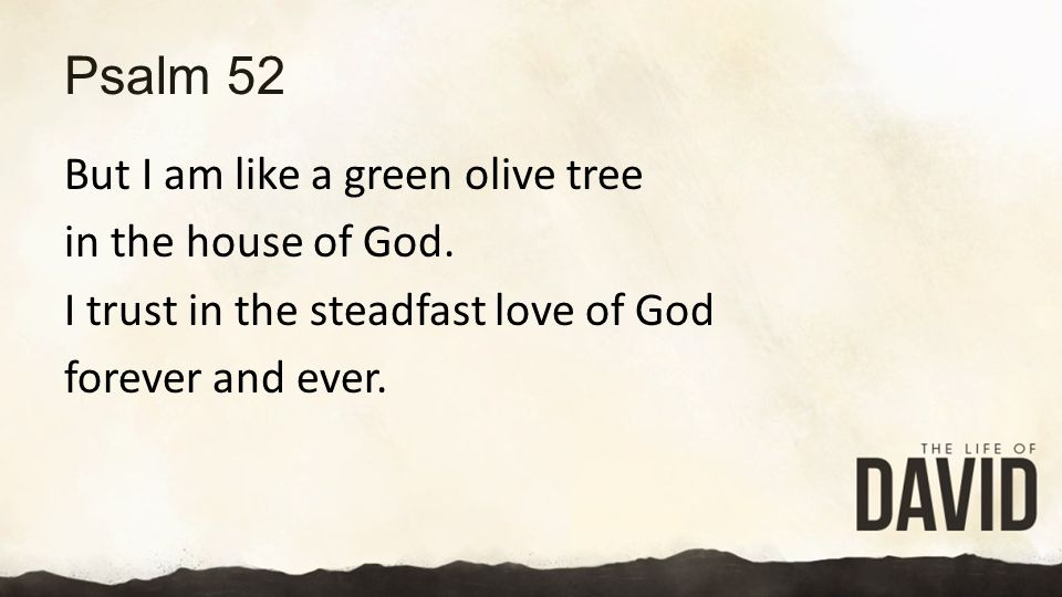 Psalm 52 But I am like a green olive tree in the house of God.