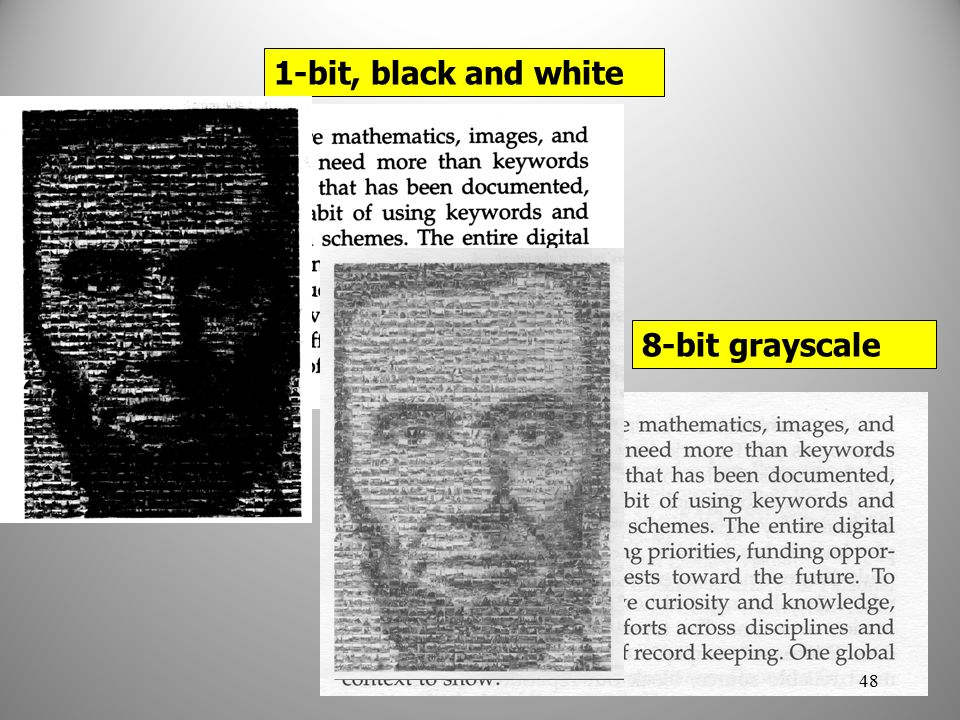 1-bit, black and white 8-bit grayscale 48