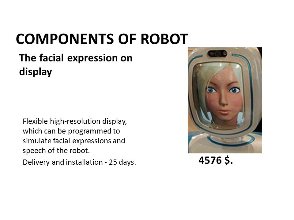 COMPONENTS OF ROBOT Flexible high-resolution display, which can be programmed to simulate facial expressions and speech of the robot.