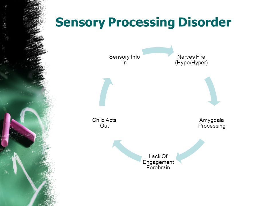 Sensory Processing Disorder Nerves Fire (Hypo/Hyper) Amygdala Processing Lack Of Engagement Forebrain Child Acts Out Sensory Info In