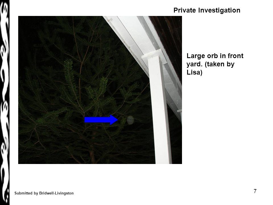 7 Submitted by Bridwell-Livingston Large orb in front yard. (taken by Lisa) Private Investigation