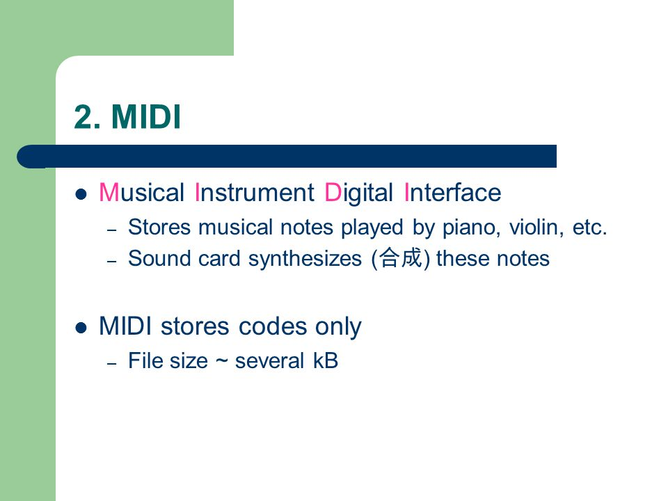 2. MIDI Musical Instrument Digital Interface – Stores musical notes played by piano, violin, etc.