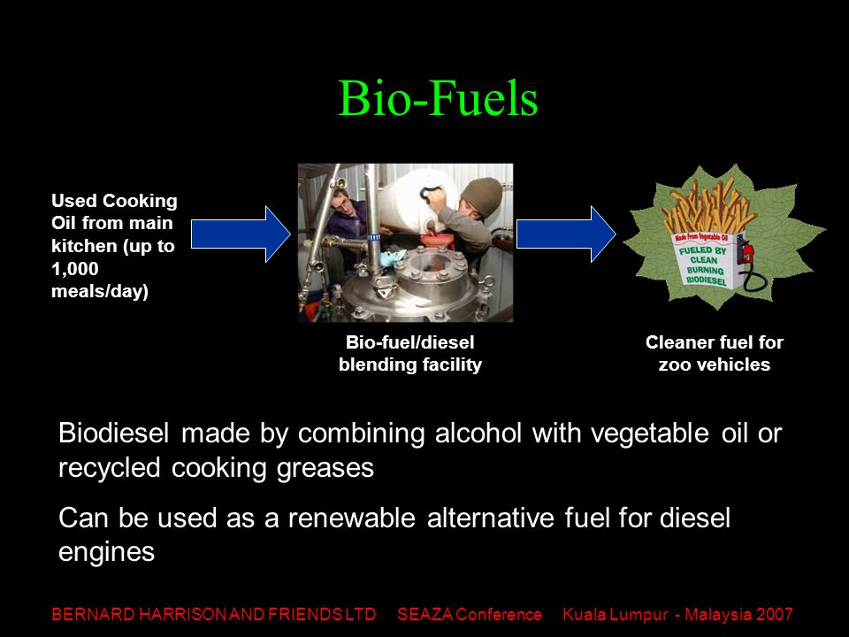 BERNARD HARRISON AND FRIENDS LTD SEAZA Conference Kuala Lumpur - Malaysia 2007 Bio-Fuels Used Cooking Oil from main kitchen (up to 1,000 meals/day) Bio-fuel/diesel blending facility Cleaner fuel for zoo vehicles Biodiesel made by combining alcohol with vegetable oil or recycled cooking greases Can be used as a renewable alternative fuel for diesel engines