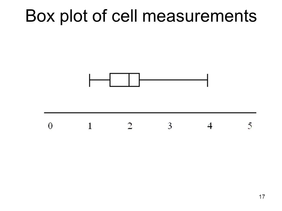 Box plot of cell measurements 17