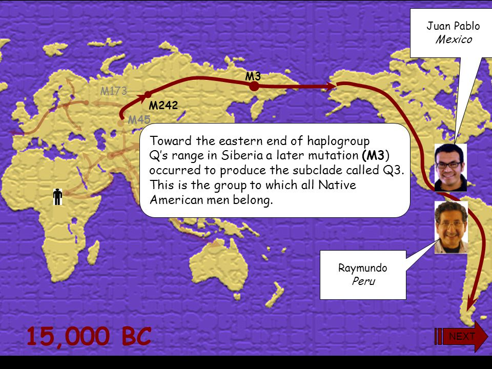 15,000 BC M173 M45 M242 As opposed to the earlier R (M173) lineage, which had migrated west into Europe, most Q-men (M242) followed the endless grasslands of Central Asia to the east.