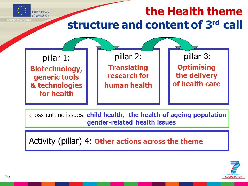 16 Based on proposed draft work programme prior to final consultations the Health theme structure and content of 3 rd call pillar 1: Biotechnology, generic tools & technologies for health pillar 2: Translating research for human health pillar 3: Optimising the delivery of health care cross-cutting issues: child health, the health of ageing population gender-related health issues Activity (pillar) 4: Other actions across the theme