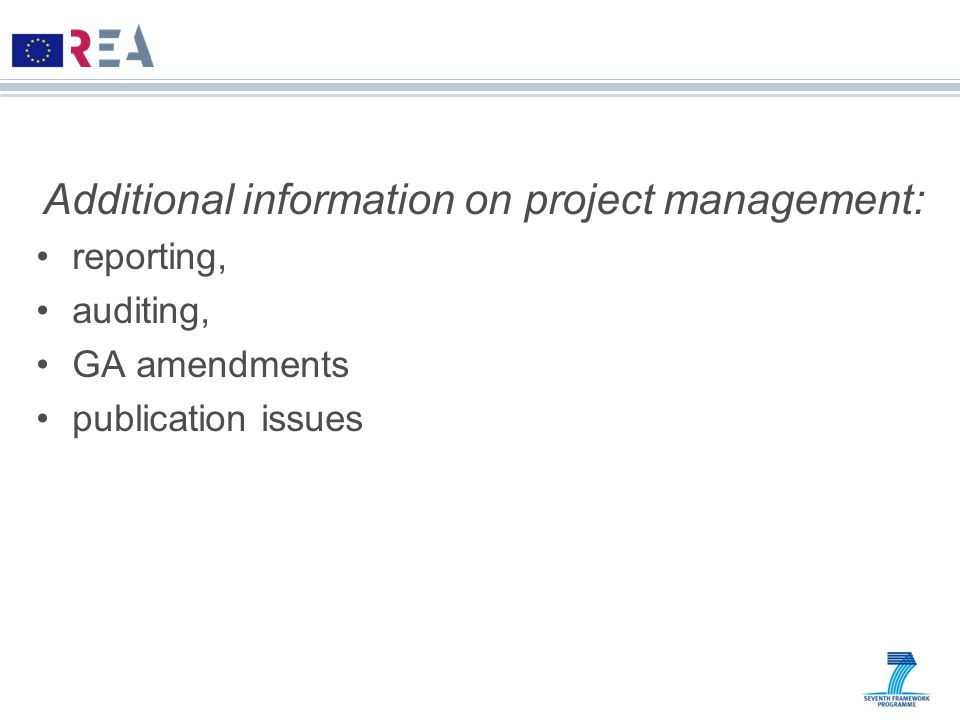 Additional information on project management: reporting, auditing, GA amendments publication issues