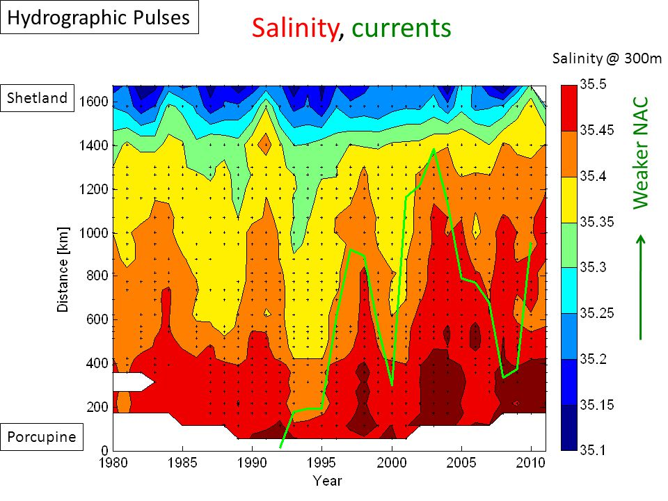Porcupine Shetland Salinity @ 300m Hydrographic Pulses Salinity, currents Weaker NAC