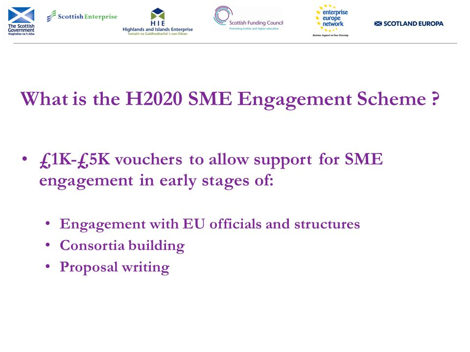 What is the H2020 SME Engagement Scheme .