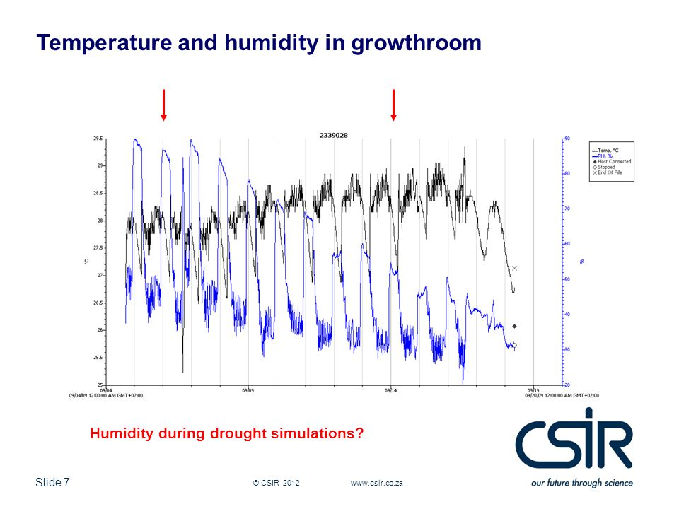 Slide 7 © CSIR 2012 www.csir.co.za Temperature and humidity in growthroom Humidity during drought simulations