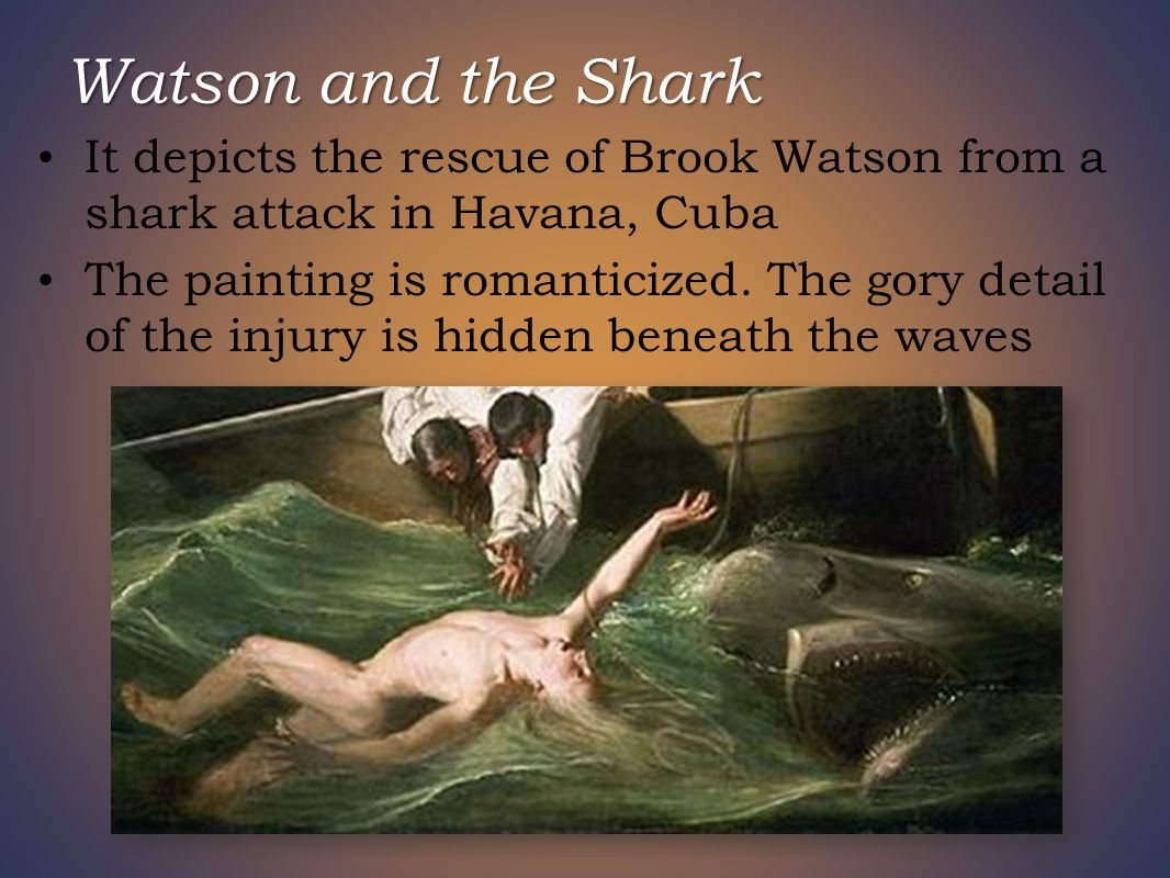 Watson and the Shark It depicts the rescue of Brook Watson from a shark attack in Havana, Cuba The painting is romanticized.