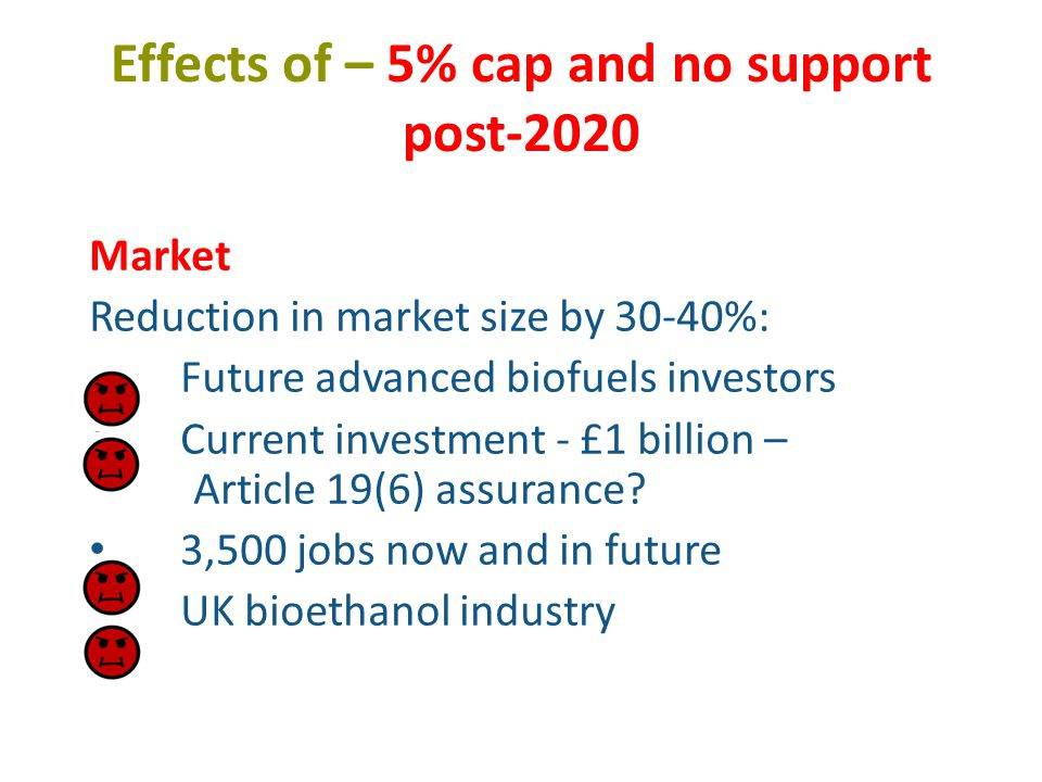 Effects of – 5% cap and no support post-2020 Market Reduction in market size by 30-40%: Future advanced biofuels investors Current investment - £1 billion – Article 19(6) assurance.