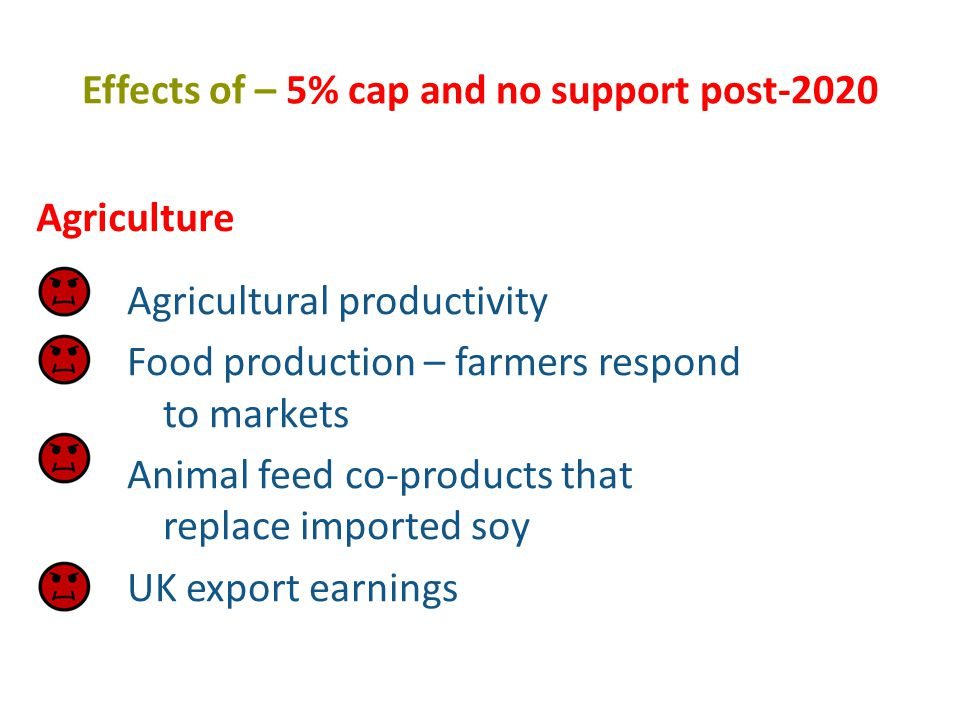 Effects of – 5% cap and no support post-2020 Agricultural productivity Food production – farmers respond to markets Animal feed co-products that replace imported soy UK export earnings Agriculture