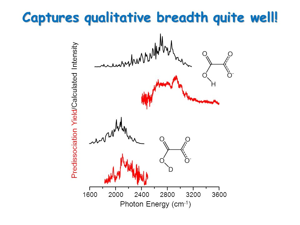 160020002400280032003600 Photon Energy (cm -1 ) Predissociation Yield/Calculated Intensity Captures qualitative breadth quite well!