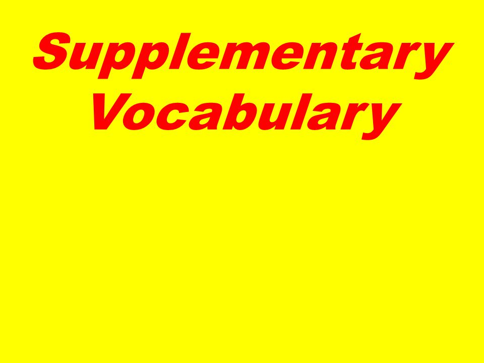 Supplementary Vocabulary