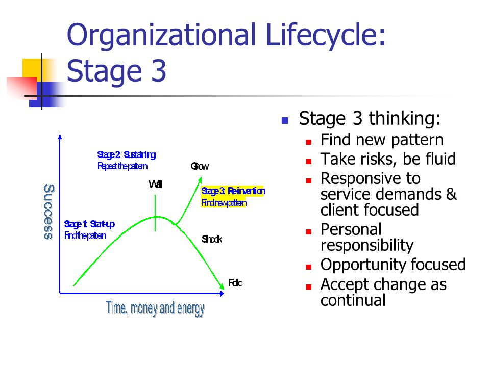 Organizational Lifecycle: Stage 3 Stage 3 thinking: Find new pattern Take risks, be fluid Responsive to service demands & client focused Personal responsibility Opportunity focused Accept change as continual