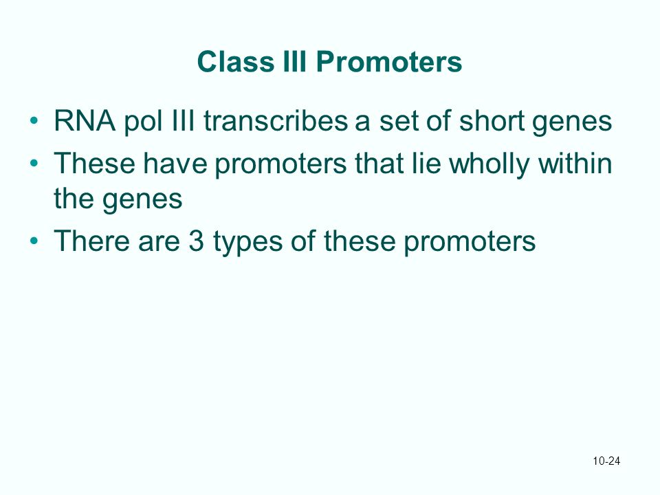 10-24 Class III Promoters RNA pol III transcribes a set of short genes These have promoters that lie wholly within the genes There are 3 types of these promoters