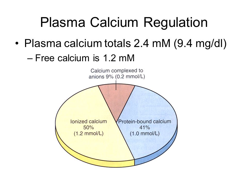Plasma Calcium Regulation Plasma calcium totals 2.4 mM (9.4 mg/dl) –Free calcium is 1.2 mM