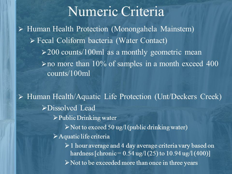 Numeric Criteria  Human Health Protection (Monongahela Mainstem)  Fecal Coliform bacteria (Water Contact)  200 counts/100ml as a monthly geometric mean  no more than 10% of samples in a month exceed 400 counts/100ml  Human Health/Aquatic Life Protection (Unt/Deckers Creek)  Dissolved Lead  Public Drinking water  Not to exceed 50 ug/l (public drinking water)  Aquatic life criteria  1 hour average and 4 day average criteria vary based on hardness [chronic = 0.54 ug/l (25) to ug/l (400)]  Not to be exceeded more than once in three years